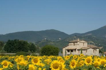 Umbria and Cortona
