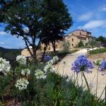 wedding-chianti-tuscany-ferrazza05