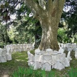 wedding-tuscan-coast8