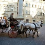 Horse Drawn Carriage Italy